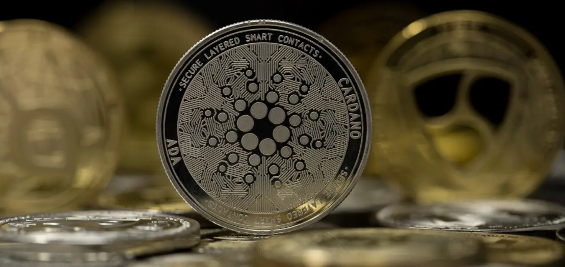 Tips to Choose the Right Platform for Trading Cardano